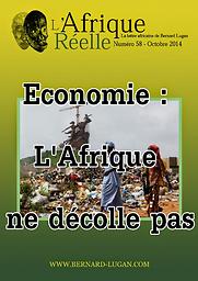 Afrique réelle : La lettre africaine de Bernard Lugan