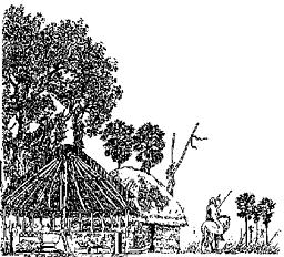Méga-Tchad