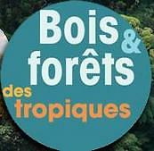 Bois et forêts des tropiques