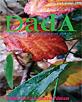 Dada : Rivista di Antropologia post-globale