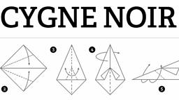 Cygne noir : revue d'exploitation sémiotique