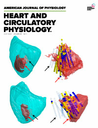 American journal of physiology. Heart and circulatory physiology