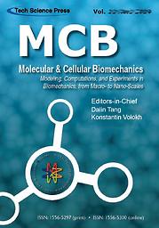 Molecular & Cellular Biomechanics