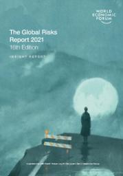 Global risks report